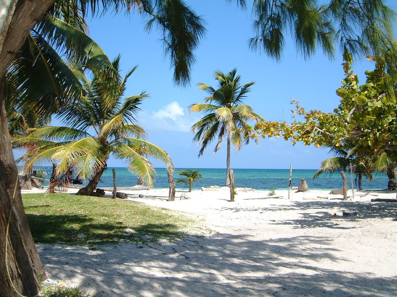 Mahahual Mexico  city images : De Mahahual | Fotos de Playas de Mexico, Fotos de Playas en Mexico ...