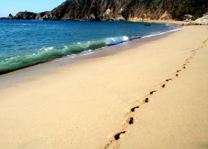 Playa_Mazunte