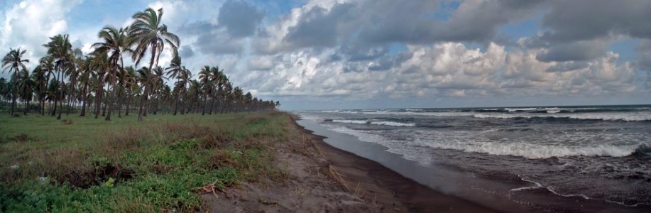 Playa-Jardín-Eréndira-Michoacán